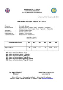 Informe 18-11-13-page-001